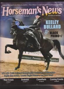 horse-side saddle 001 (2)